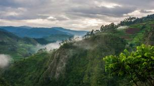 bwindi-impenetrable-national-park